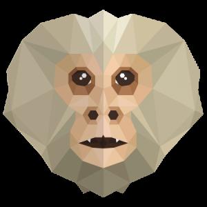 Profile photo of Capuchino